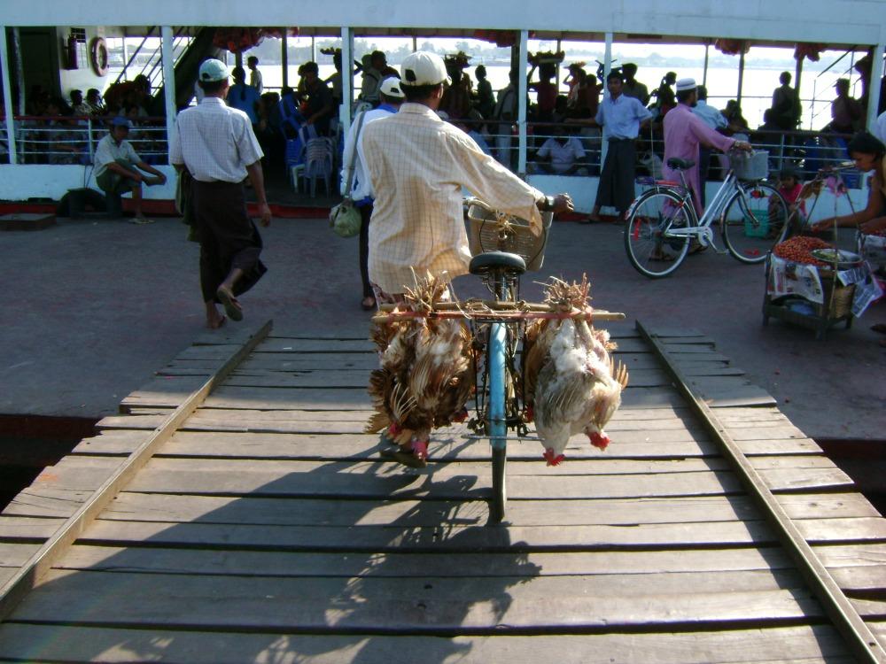 Ferry to Dalah